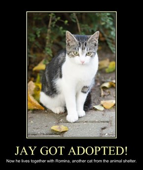JAY GOT ADOPTED!