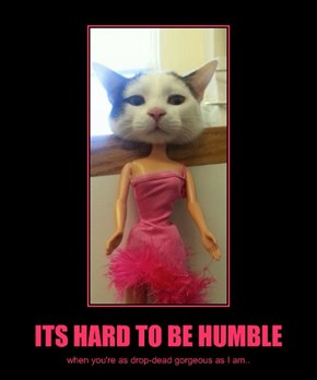 ITS HARD TO BE HUMBLE