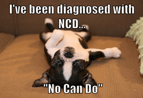"I've been diagnosed with NCD...   ""No Can Do"""