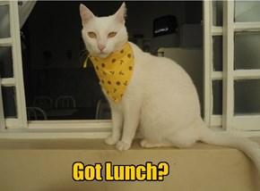 Got Lunch?