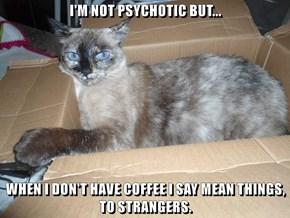 I'M NOT PSYCHOTIC BUT...