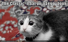 """The Classic """"I Sat on a Lego"""" Look"""