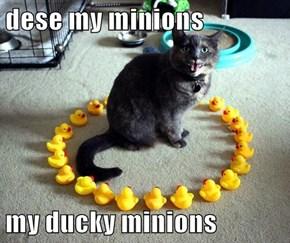 dese my minions  my ducky minions