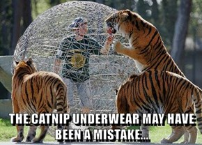 THE CATNIP UNDERWEAR MAY HAVE BEEN A MISTAKE...
