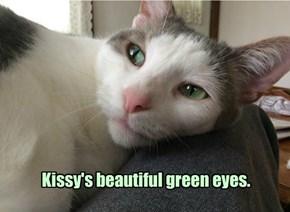 Allcats' kitteh Kissy