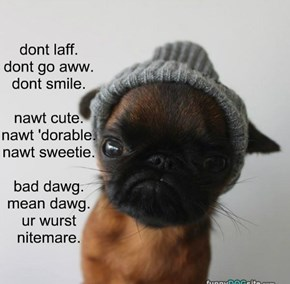 dont laff. dont go aww. dont smile.  nawt cute. nawt 'dorable. nawt sweetie.  bad dawg. mean dawg. ur wurst nitemare.
