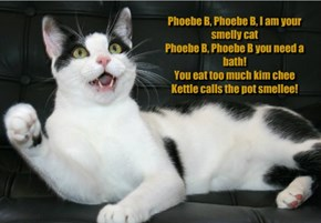 Phoebe B, Phoebe B, I am your smelly cat Phoebe B, Phoebe B you need a bath! You eat too much kim chee Kettle calls the pot smellee!