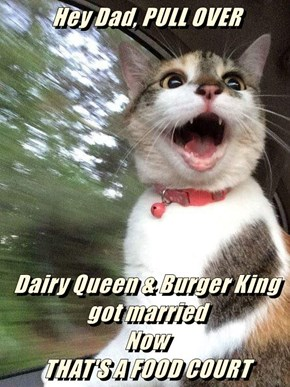 Hey Dad, PULL OVER                Dairy Queen & Burger King got married                                                       Now                                                        THAT'S A FOOD COURT