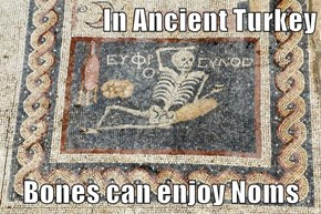 In Ancient Turkey  Bones can enjoy Noms