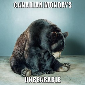 CANADIAN MONDAYS  UNBEARABLE