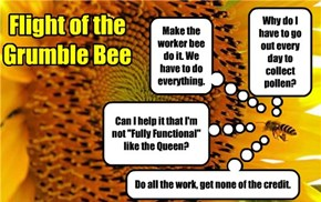 Flight of the Grumble Bee