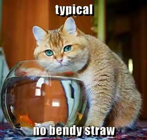 typical  no bendy straw