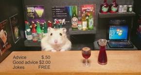 Hammie's Bar