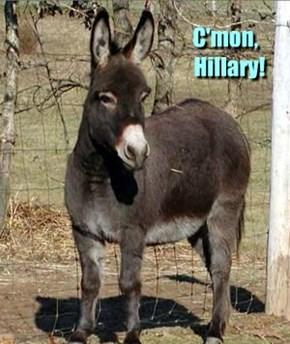 C'mon,                  Hillary!