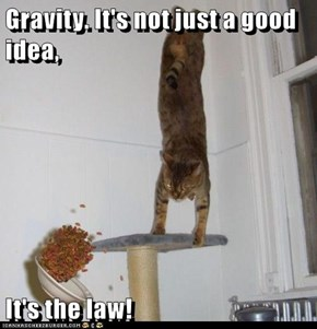 The LOL Of Gravity