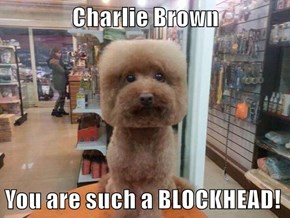 Charlie Brown  You are such a BLOCKHEAD!