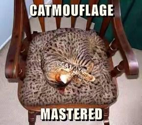 CATMOUFLAGE    MASTERED