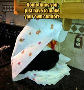 Sometimes you  just have to make  your own comfort.
