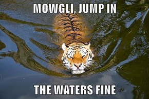MOWGLI, JUMP IN   THE WATERS FINE