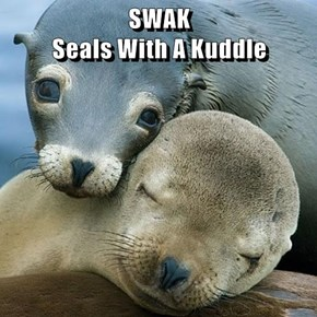SWAK                                          Seals With A Kuddle