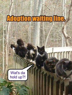 Standing in line can seem like forever!