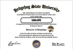 Congrats Dr. APC!