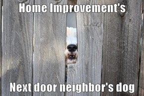 Home Improvement's  Next door neighbor's dog