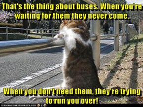 That's the thing about buses. When you're waiting for them they never come.  When you don't need them, they're trying to run you over!