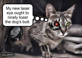 My new laser eye ought to nicely toast the dog's butt.