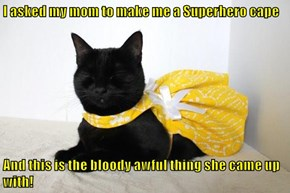 I asked my mom to make me a Superhero cape  And this is the bloody awful thing she came up with!