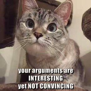 your arguments are INTERESTING                                             yet NOT CONVINCING