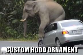 CUSTOM HOOD ORNAMENT