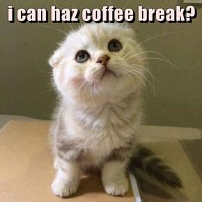 i can haz coffee break?