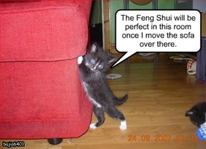 The Feng Shui will be perfect in this room once I move the sofa over there.