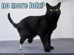 no more lolz?