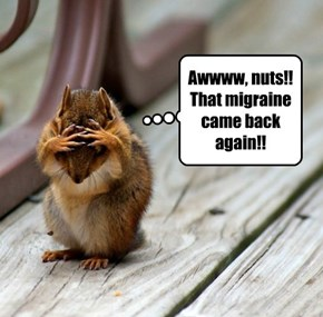Awwww, nuts!! That migraine came back again!!