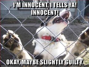 I'M INNOCENT, I TELLS YA! INNOCENT!  OKAY, MAYBE SLIGHTLY GUILTY.