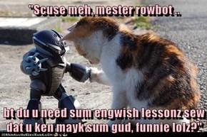 """Scuse meh, mester rowbot ..  bt du u need sum engwish lessonz sew dat u ken mayk sum gud, funnie lolz?"""