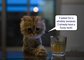 I asked for a whiskey sourpuss.  I already have a fuzzy navel.