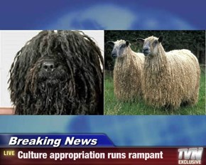 Breaking News - Culture appropriation runs rampant
