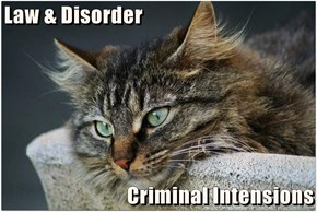 Law & Disorder  Criminal Intensions