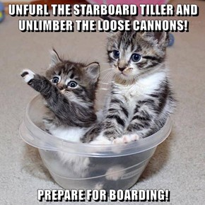UNFURL THE STARBOARD TILLER AND UNLIMBER THE LOOSE CANNONS!  PREPARE FOR BOARDING!