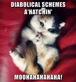 DIABOLICAL SCHEMES A'HATCHIN'  MOOHAHAHAHAHA!