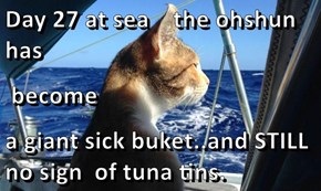 Day 27 at sea    the ohshun has  become a giant sick buket..and STILL no sign  of tuna tins.