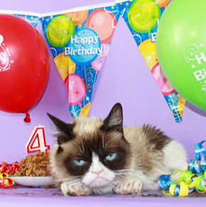 In Honor of Grumpy Cat's 4th Birthday Here's Some Stuff You Probably Didn't Know About the Internet's Favorite Feline
