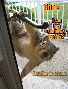 I'm allergic to nuts.
