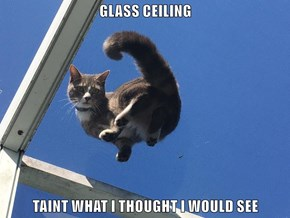 GLASS CEILING  TAINT WHAT I THOUGHT I WOULD SEE