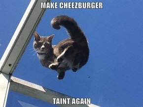 MAKE CHEEZBURGER  TAINT AGAIN
