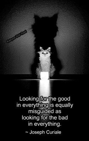 Looking for the good   in everything is equally   misguided as    looking for the bad   in everything.