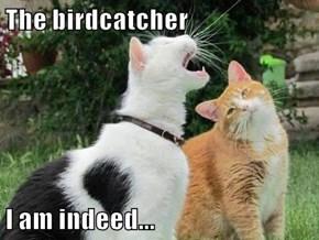 The birdcatcher  I am indeed...